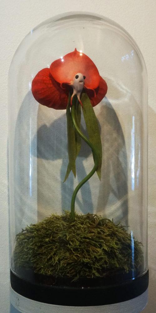 Orchidée Kawai