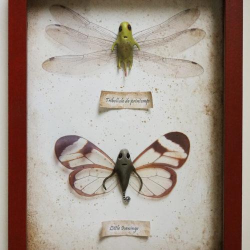 cadre deux papillons