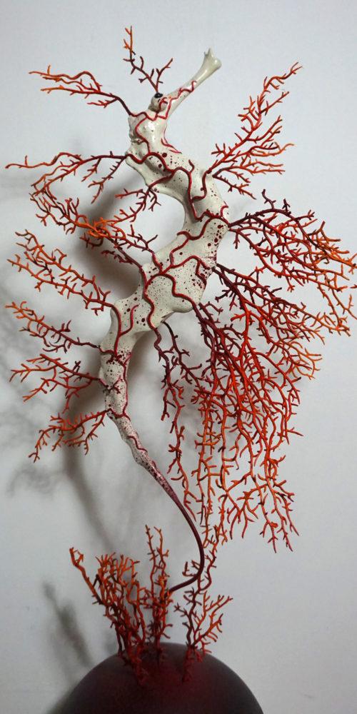 Hippocampe corail