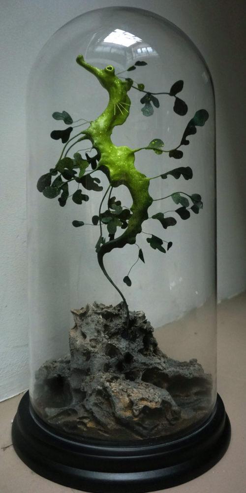 hippocampe feuille I